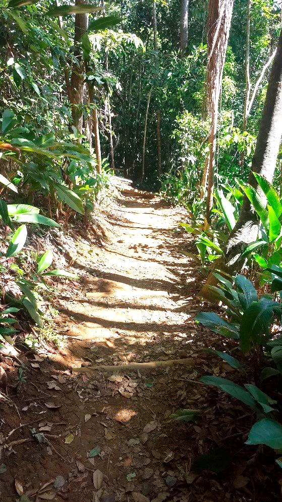 trilha-prainha-2